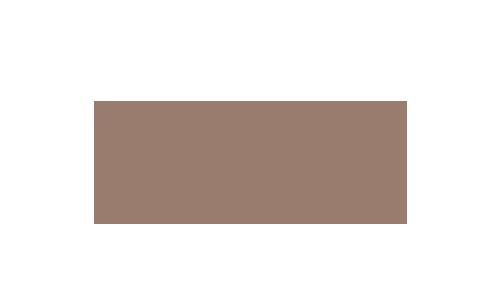 Danfoss_brown_500x300px